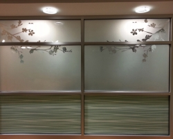 Printed Frosted Film Installation